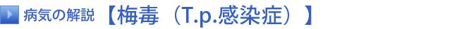 [タイトル]病気の解説【梅毒(T.p.感染症)】