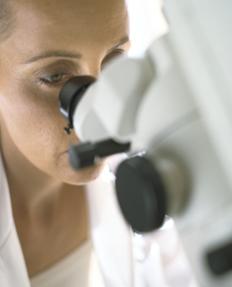[写真]梅毒の治療